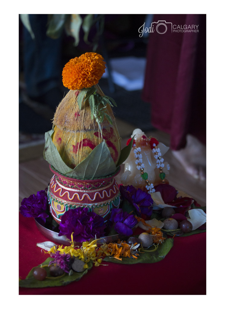 Calgary Hindu Wedding Photography Affordable (2)